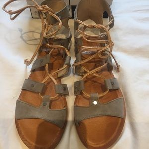 Dolce Vita Shoes - Dolce Vita Gladiator Sandals in Grey Suede